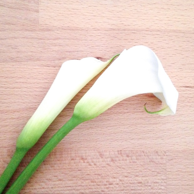 calla lily floral friday